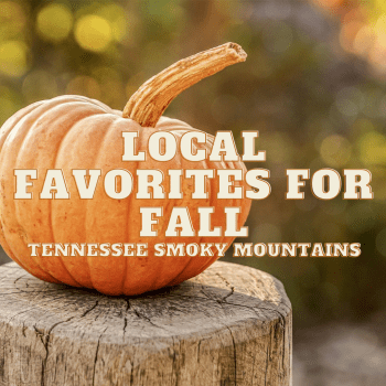 Things to Do in Fall: Hidden Gems and Local Favorites